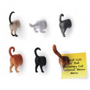 cat-bat-magnet