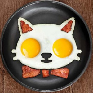 egg-mold-cat